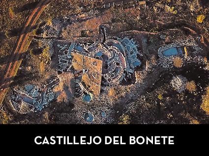 CASTILLEJO DEL BONETE